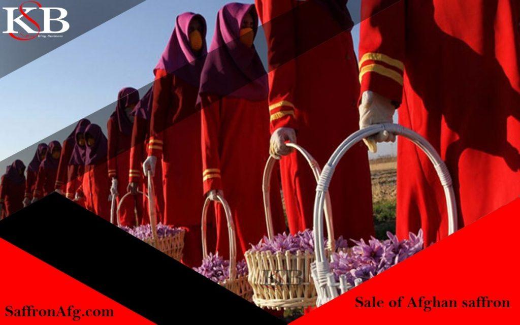 فروش زعفران افغانستانی